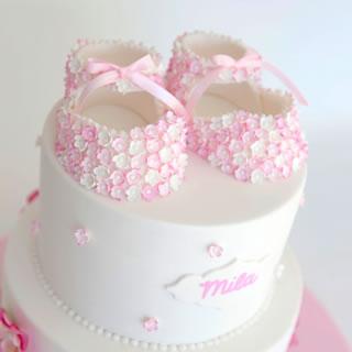 Milas booties-cake