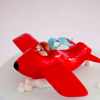 aeroplane-cake
