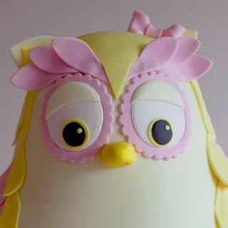 tiaas owl=cake